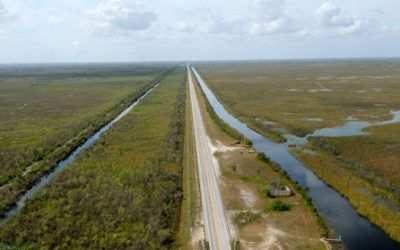 U.S. Army Corps of Engineers, Southern Florida and the Everglades Water Management History