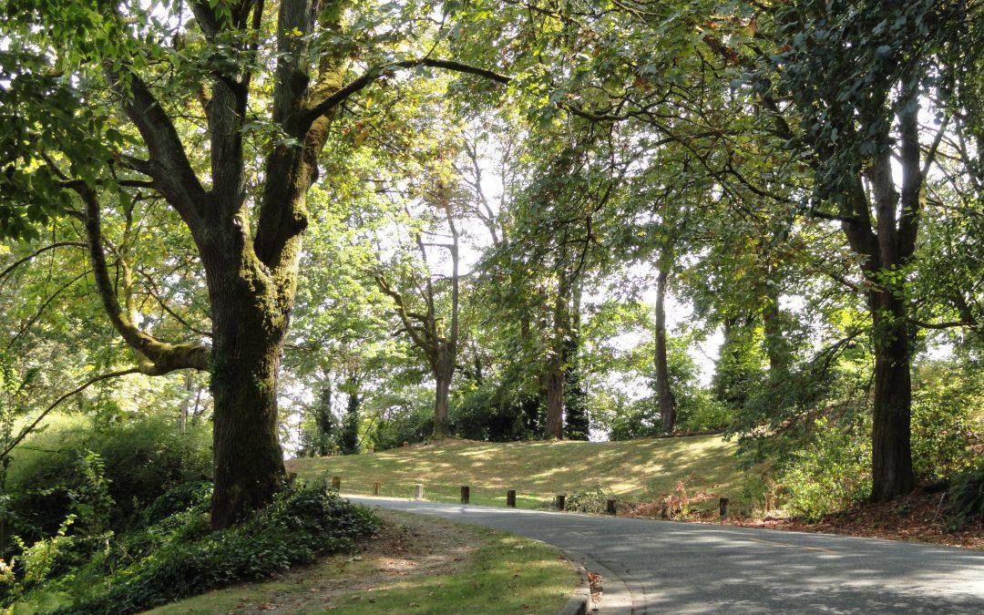 Lake Washington Boulevard added to National Register of Historic Places